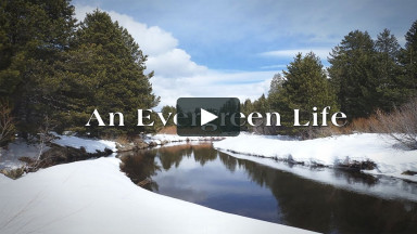 An Evergreen Life Worship Service from Sunday, September 13, 2020