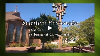 "September 27, 2020 ""Spiritual Redwoods: Tree Circles, Tribes and Community"" Service-Sermon"