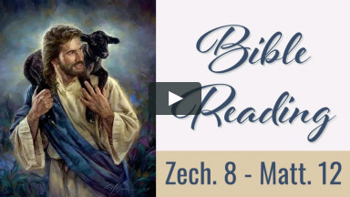 Bible Reading Week 40: Zech. 8 - Matt. 12