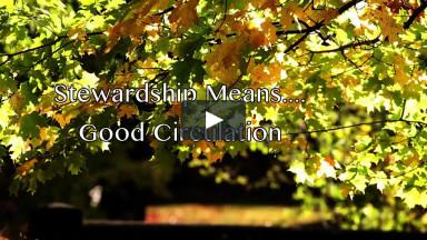 October 25, 2020 Stewardship Means... Good Circulation