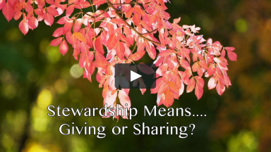 "November 8, 2020 ""Stewardship Means... Giving or Sharing?"""