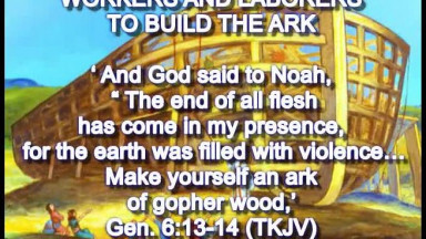12  Builders of The Ark