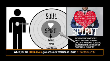 7 STEPS Episode 3: You Must Know You Are Born Again! (audio/video)